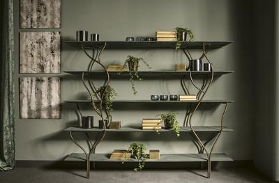 bookcase Albero
