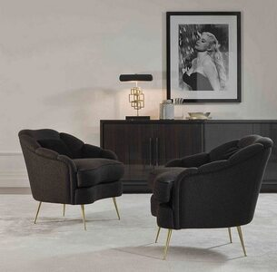 Camelia coffee table and armchair